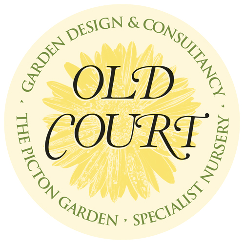 Old Court Nurseries